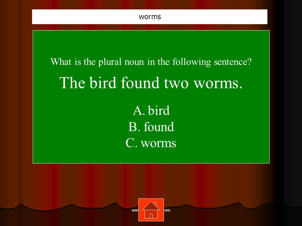 www.mrsziruolo.com What is the plural noun in the following sentence.