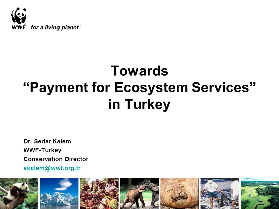 Towards Payment for Ecosystem Services in Turkey Dr.
