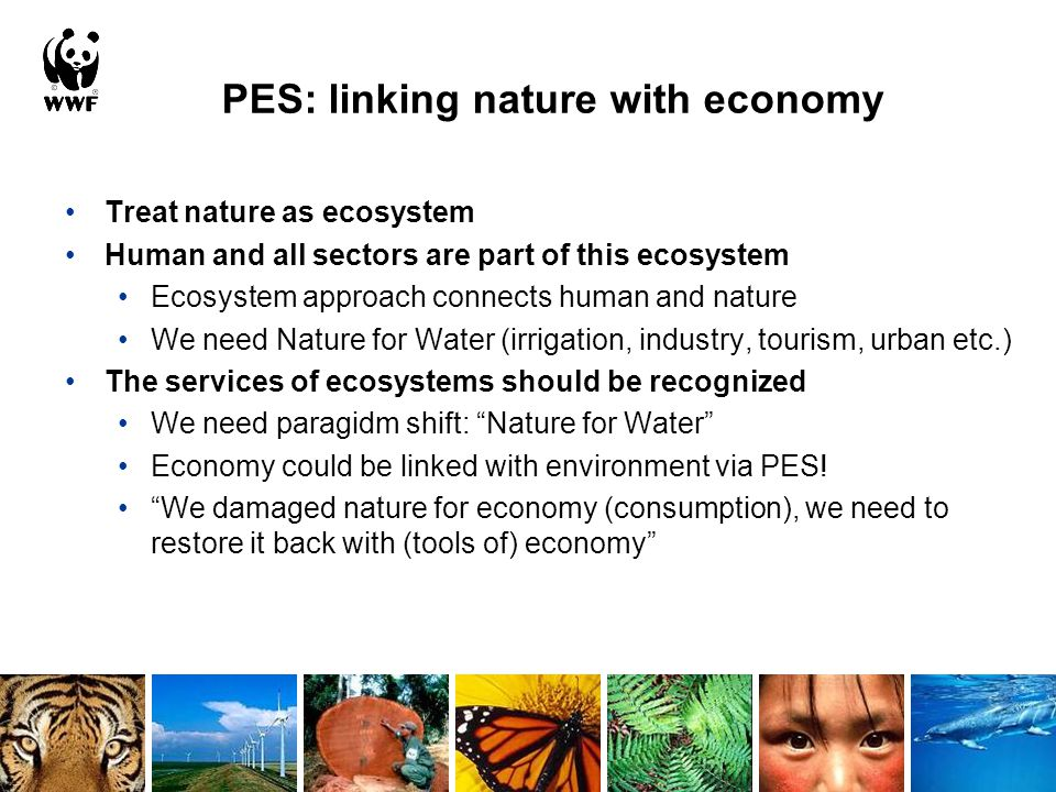 PES: linking nature with economy Treat nature as ecosystem Human and all sectors are part of this ecosystem Ecosystem approach connects human and nature We need Nature for Water (irrigation, industry, tourism, urban etc.) The services of ecosystems should be recognized We need paragidm shift: Nature for Water Economy could be linked with environment via PES.