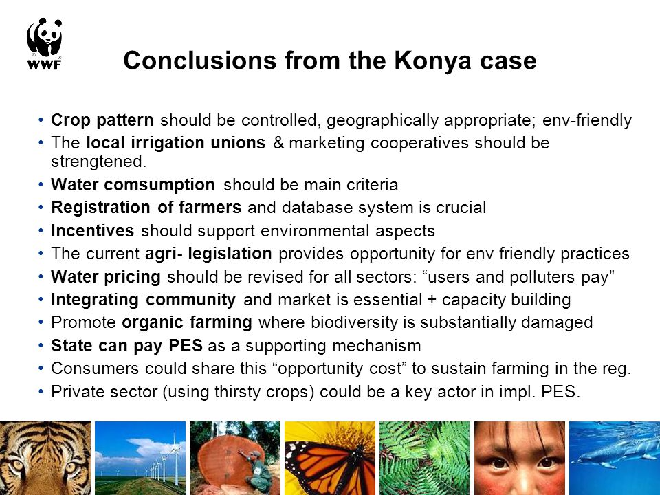 Conclusions from the Konya case Crop pattern should be controlled, geographically appropriate; env-friendly The local irrigation unions & marketing cooperatives should be strengtened.