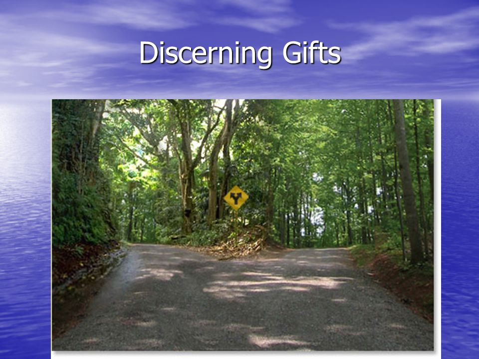 Discerning Gifts