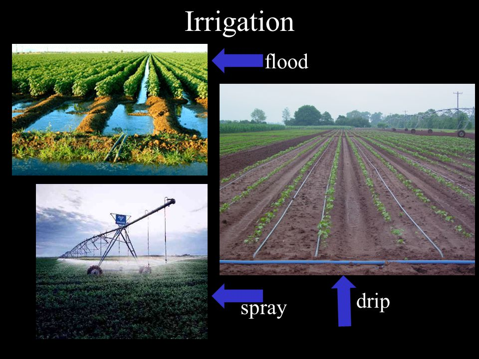 Irrigation flood drip spray