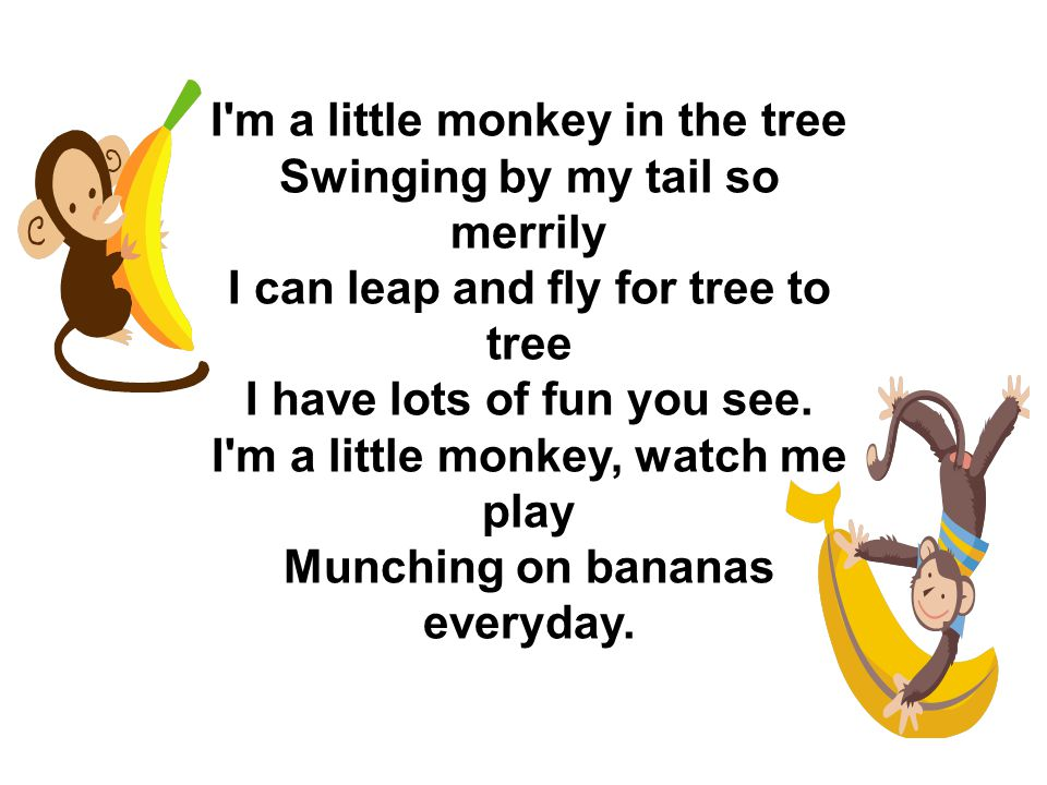 I m a little monkey in the tree Swinging by my tail so merrily I can leap and fly for tree to tree I have lots of fun you see.