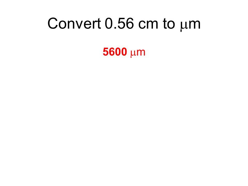 5600  m