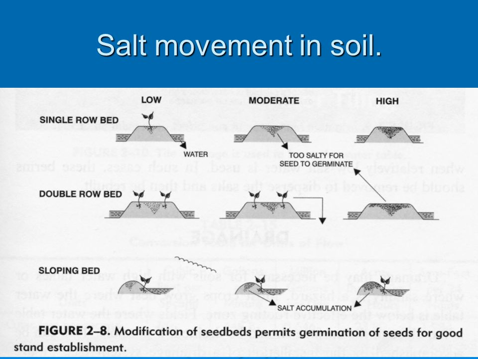 Salt movement in soil.