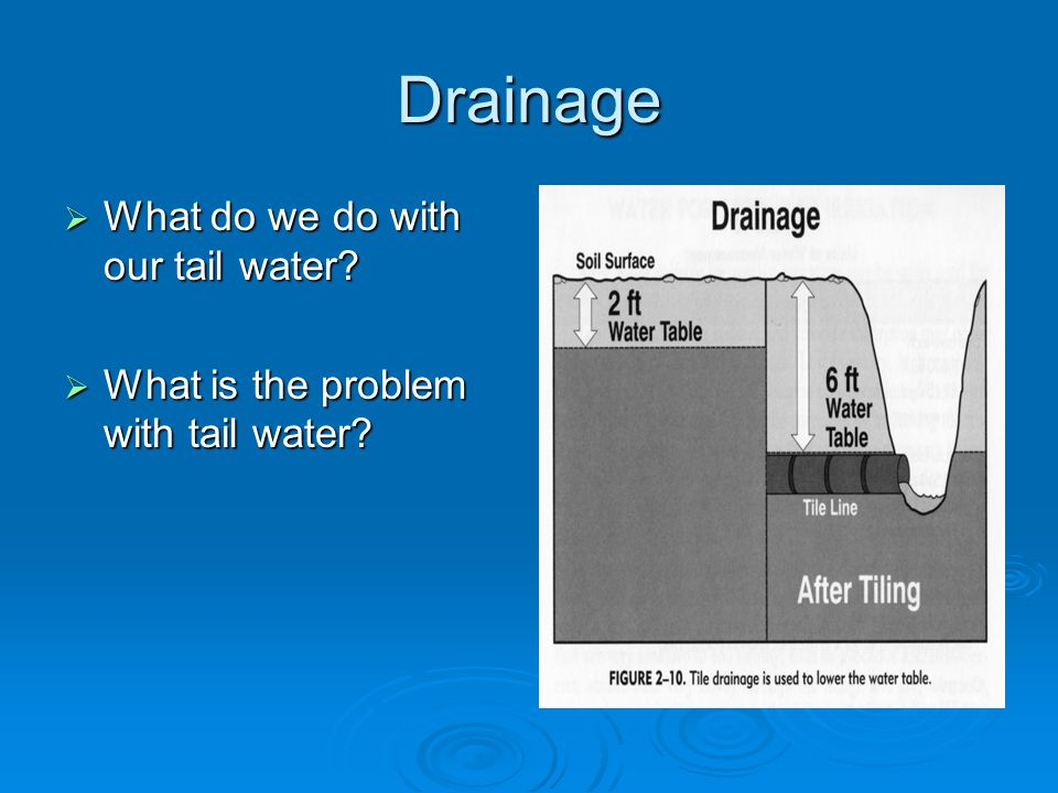 Drainage  What do we do with our tail water  What is the problem with tail water