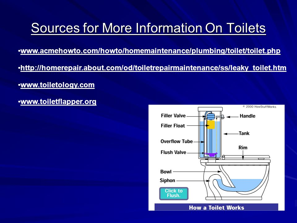 Sources for More Information On Toilets www.acmehowto.com/howto/homemaintenance/plumbing/toilet/toilet.php http://homerepair.about.com/od/toiletrepairmaintenance/ss/leaky_toilet.htm www.toiletology.com www.toiletflapper.org