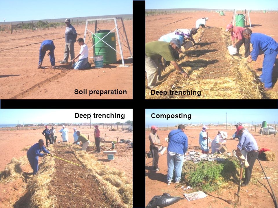 Soil preparation Deep trenching Composting