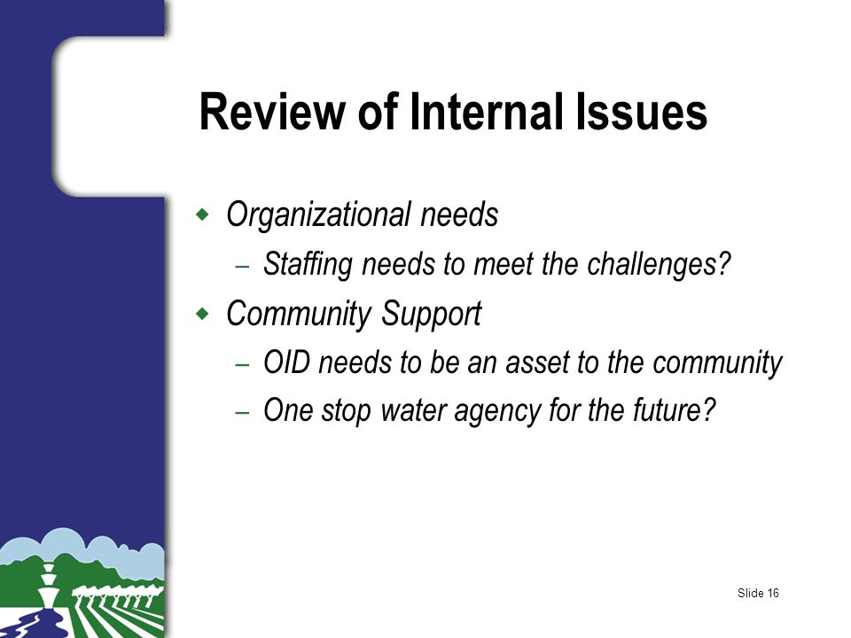 Slide 16 Review of Internal Issues w Organizational needs – Staffing needs to meet the challenges.