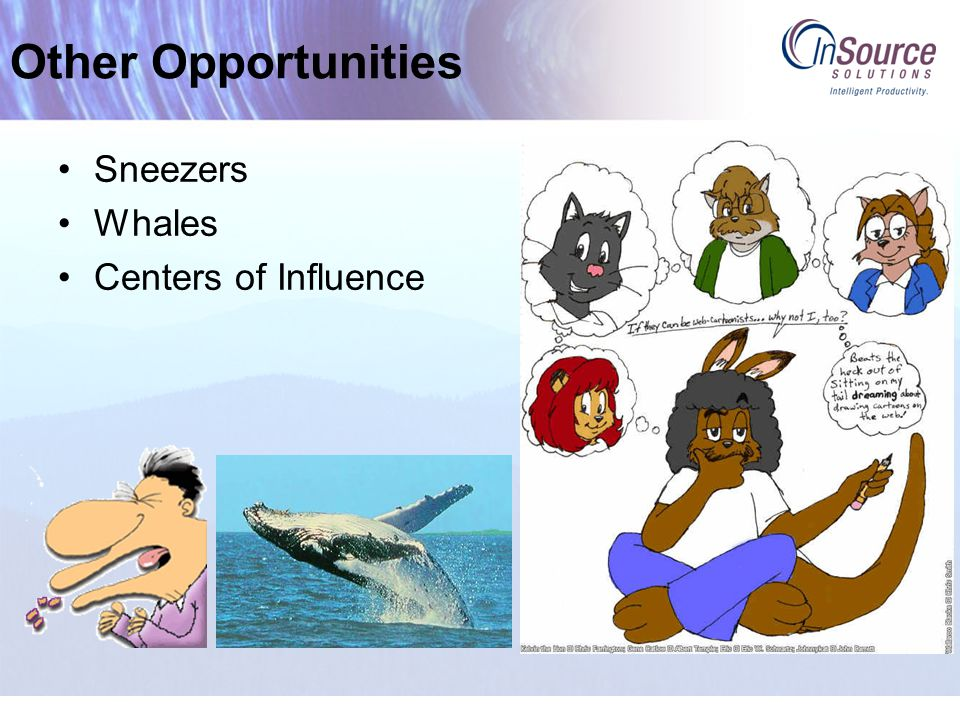 Other Opportunities Sneezers Whales Centers of Influence