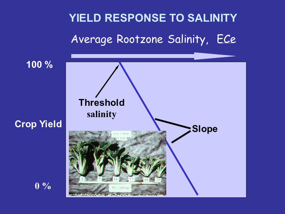 Crop salt tolerance