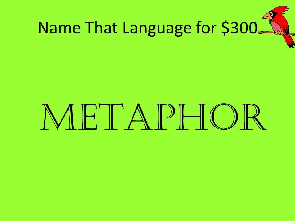 Name That Language for $300 METAPHOR