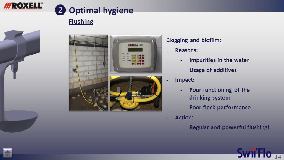 14 ❷ Optimal hygiene Flushing Clogging and biofilm: -Reasons: -Impurities in the water -Usage of additives -Impact: -Poor functioning of the drinking system -Poor flock performance -Action: -Regular and powerful flushing!