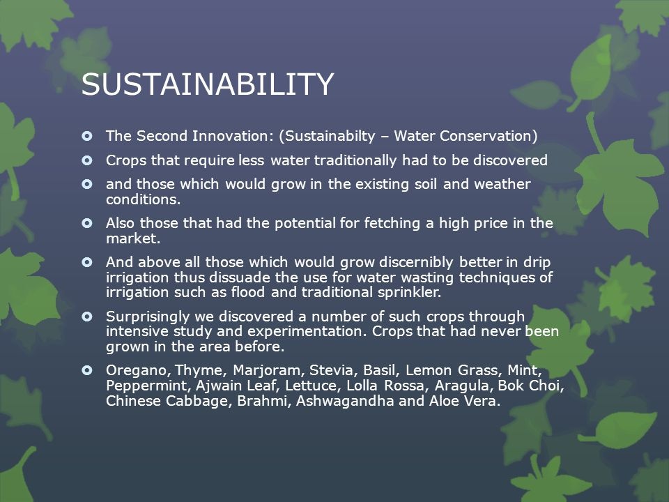 SUSTAINABILITY  The Second Innovation: (Sustainabilty – Water Conservation)  Crops that require less water traditionally had to be discovered  and those which would grow in the existing soil and weather conditions.