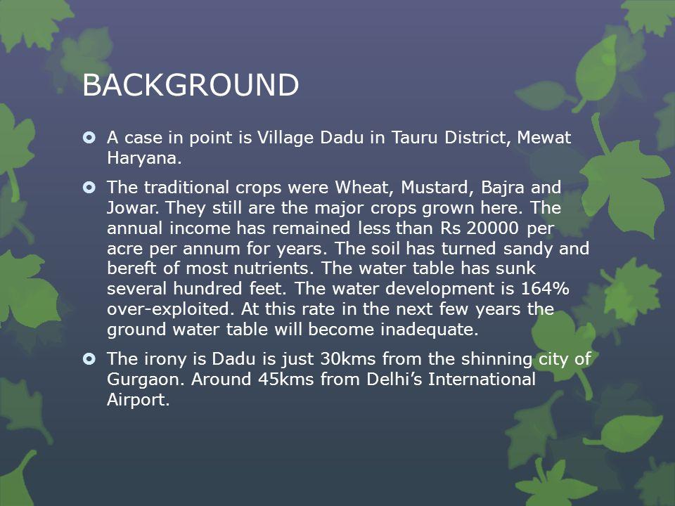 BACKGROUND  A case in point is Village Dadu in Tauru District, Mewat Haryana.