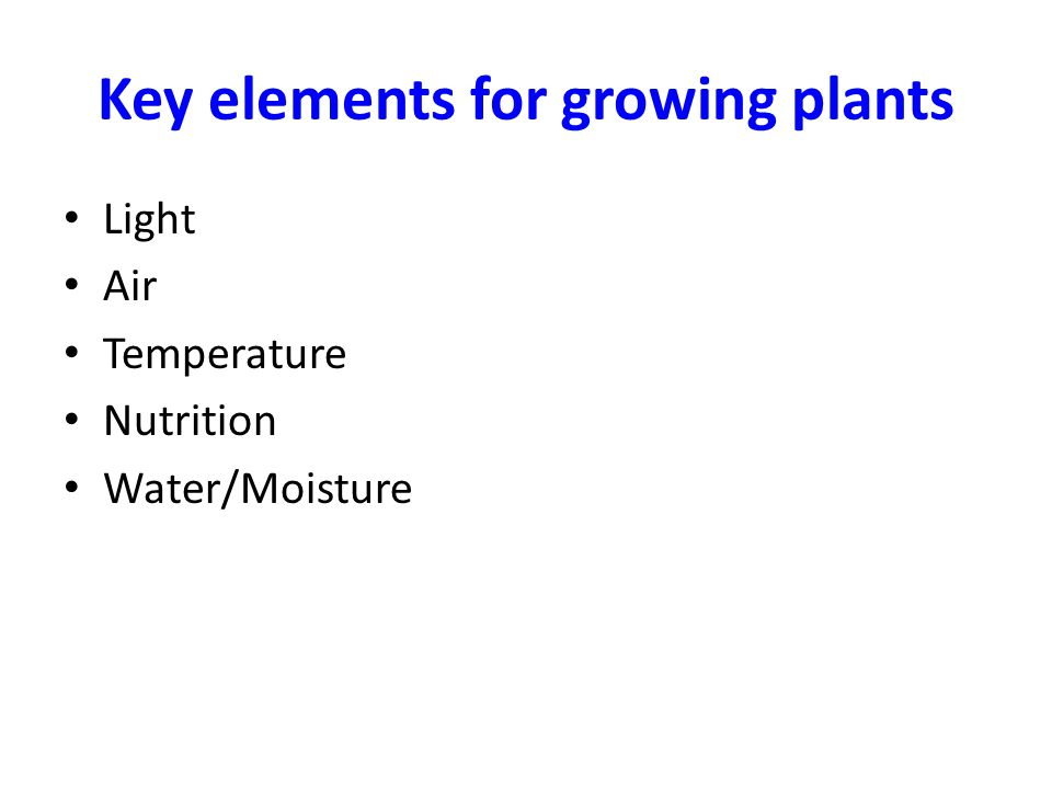 Key elements for growing plants Light Air Temperature Nutrition Water/Moisture