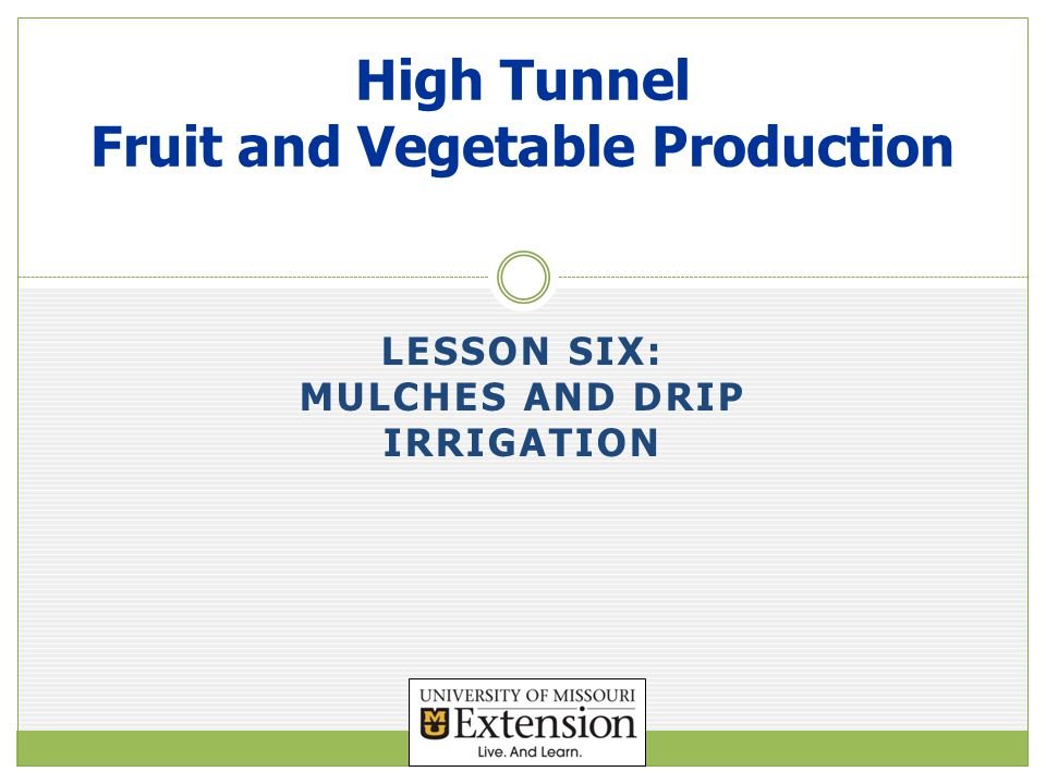 Objectives Evaluate high tunnel cropping situations where either organic or plastic mulches would be optimum.