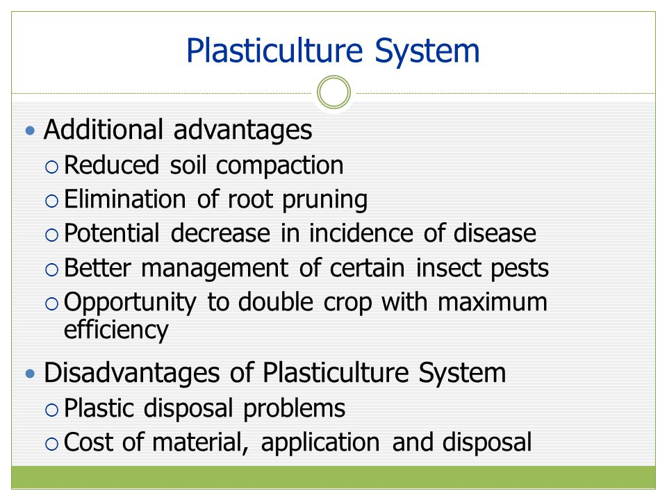 Mulches Polyethylene Mulches  Modifies microclimate  Increases soil temperature and reflectivity  Decreases soil water and nutrient loss  Increased soil temperature most important factor  Favorable for continued root growth  Dependent on coolness of spring weather