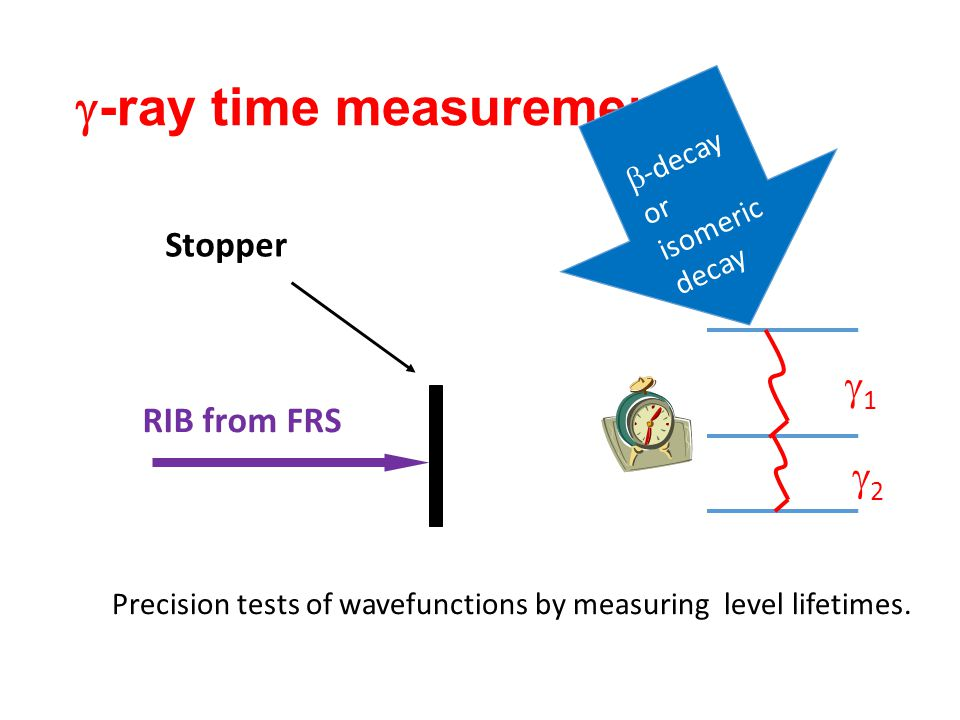  -ray time measurements Precision tests of wavefunctions by measuring level lifetimes. RIB from FRS Stopper  -decay or isomeric decay 11 22
