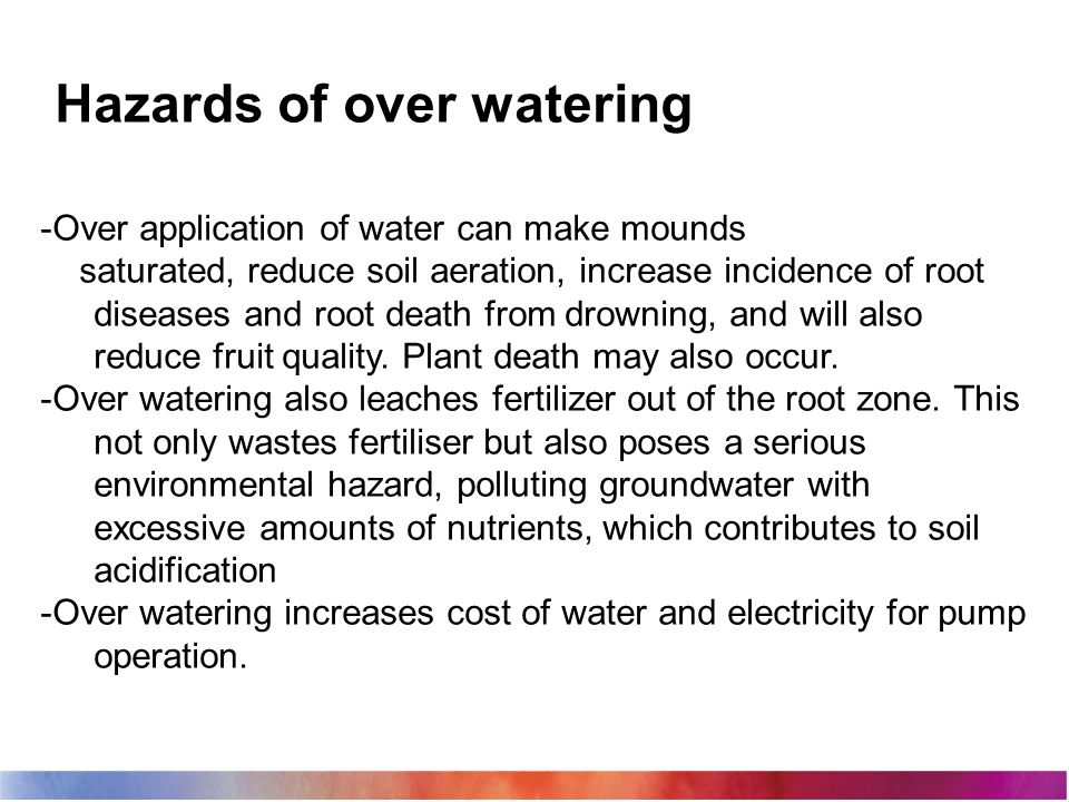 Hazards of over watering -Over application of water can make mounds saturated, reduce soil aeration, increase incidence of root diseases and root deat