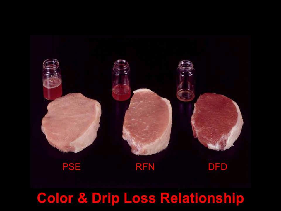 Color & Drip Loss Relationship PSERFNDFD Color & Drip Loss Relationship