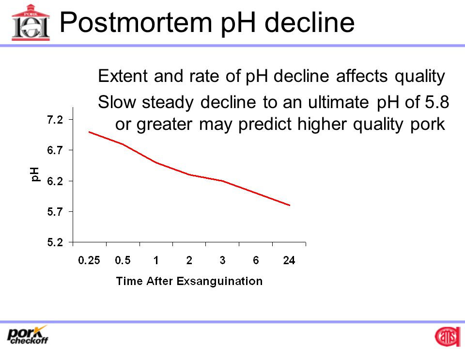 Postmortem pH decline Extent and rate of pH decline affects quality Slow steady decline to an ultimate pH of 5.8 or greater may predict higher quality pork