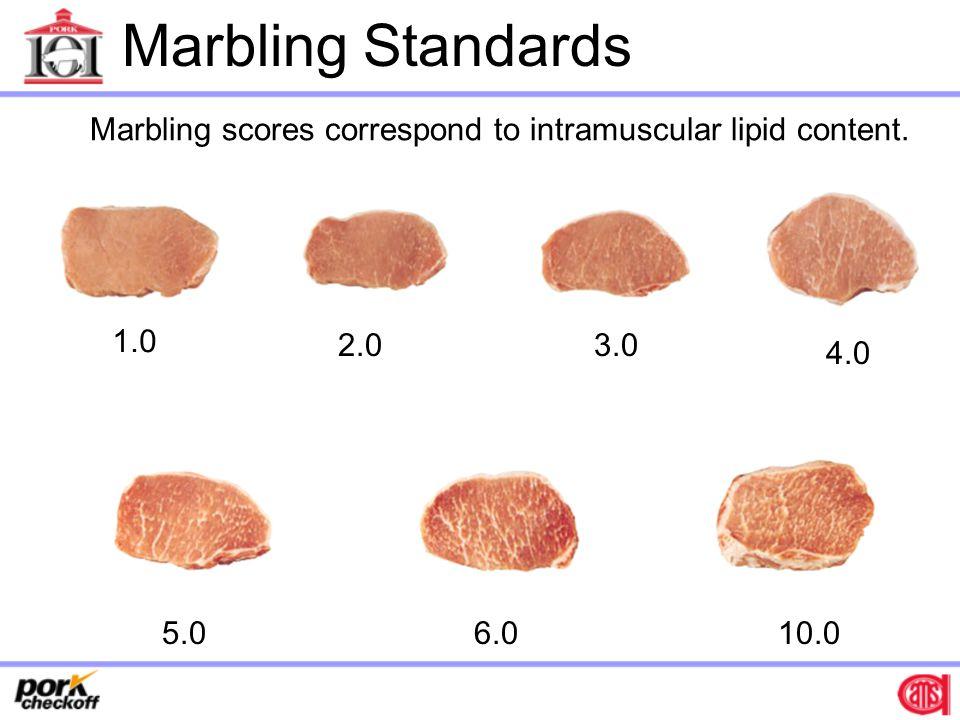 Marbling scores correspond to intramuscular lipid content.
