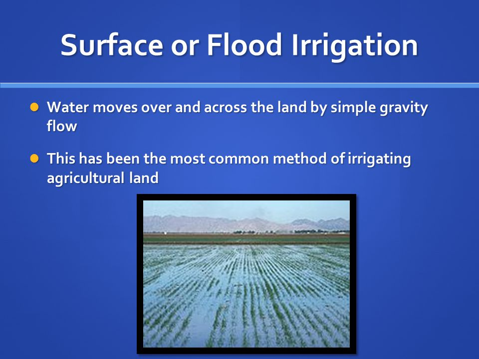 Surface or Flood Irrigation Advantages: Advantages: Relatively small investment on low-tech equipment Relatively small investment on low-tech equipment Simple to understand Simple to understand Disadvantages: Disadvantages: Labor intensive Labor intensive High maintenance High maintenance Can lead to water-logging and soil salinity if there is not adequate drainage Can lead to water-logging and soil salinity if there is not adequate drainage Won't work well on uneven surfaces Won't work well on uneven surfaces