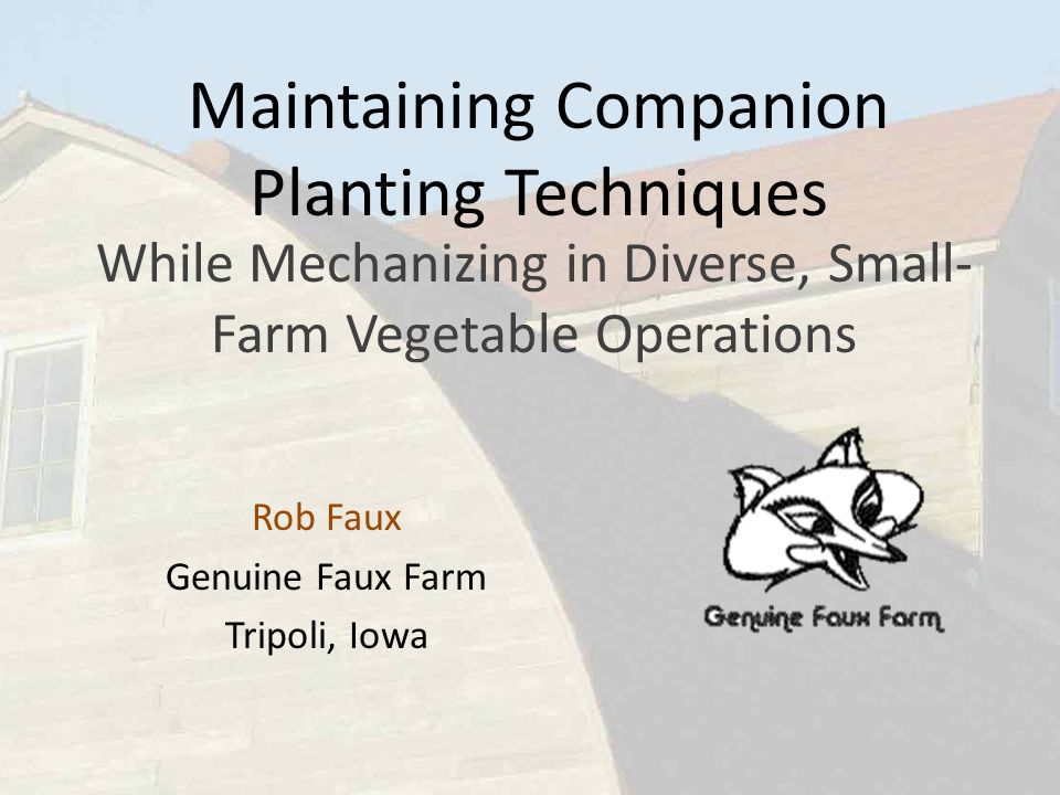 Maintaining Companion Planting Techniques While Mechanizing in Diverse, Small- Farm Vegetable Operations Rob Faux Genuine Faux Farm Tripoli, Iowa