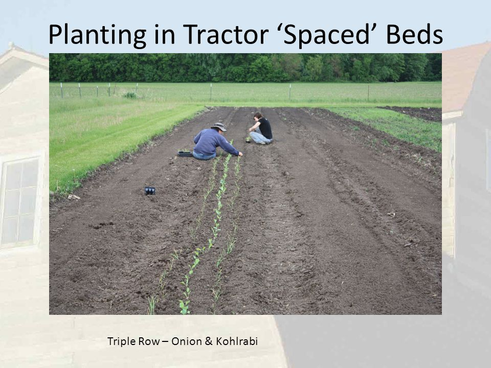 Planting in Tractor 'Spaced' Beds Triple Row – Onion & Kohlrabi