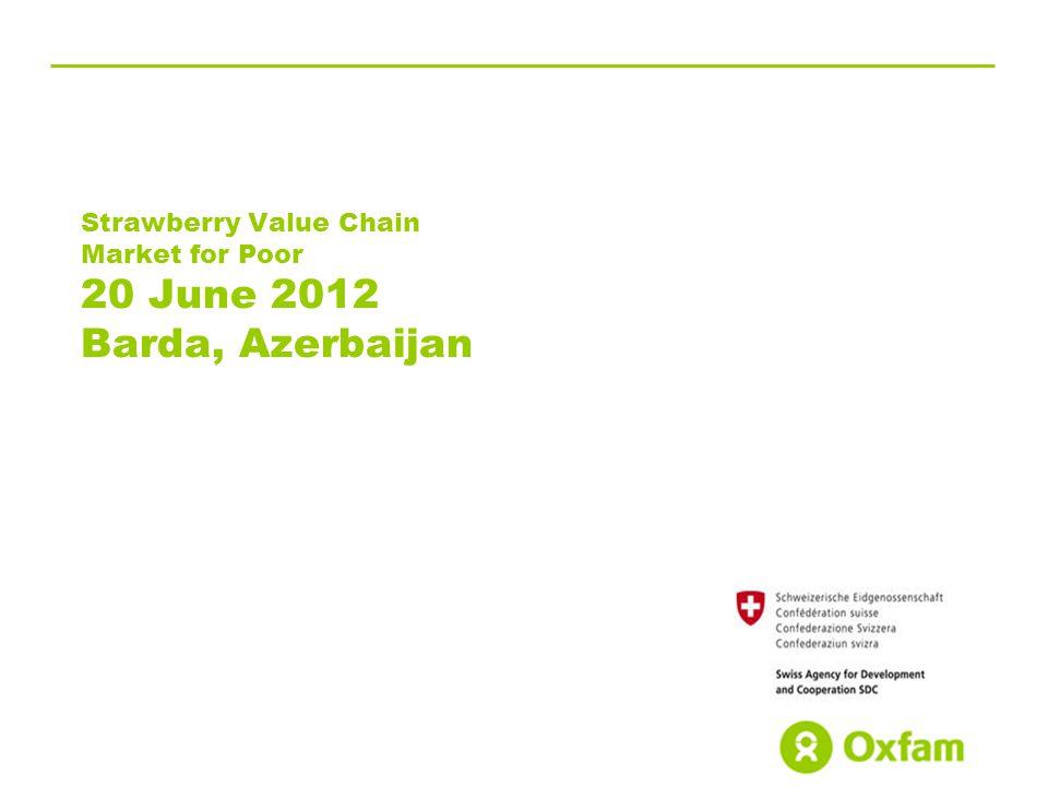 Strawberry Value Chain Market for Poor 20 June 2012 Barda, Azerbaijan