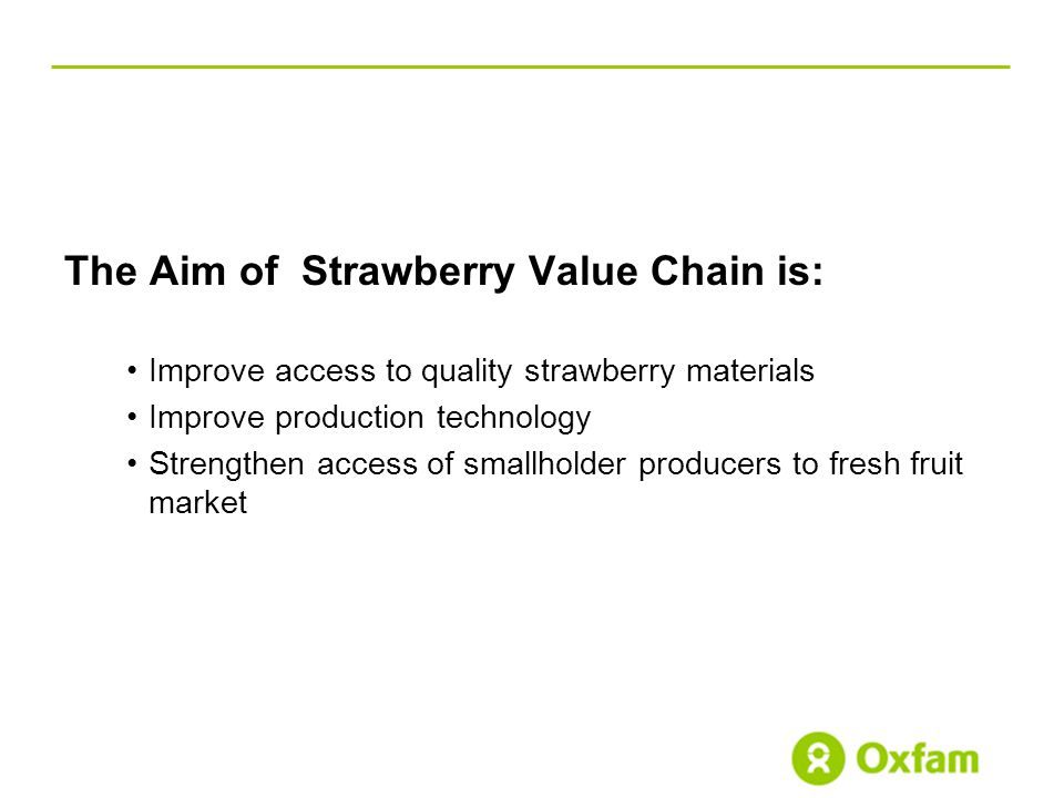 The Aim of Strawberry Value Chain is: Improve access to quality strawberry materials Improve production technology Strengthen access of smallholder producers to fresh fruit market