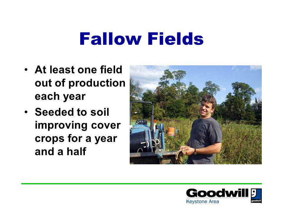 Fallow Fields At least one field out of production each year Seeded to soil improving cover crops for a year and a half