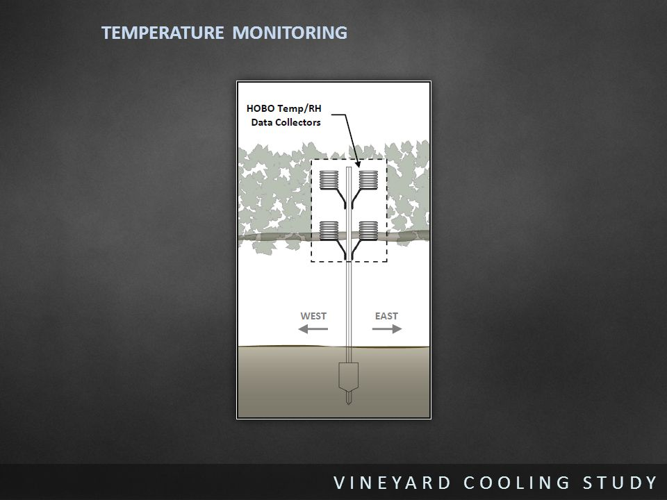 VINEYARD COOLING STUDY TEMPERATURE MONITORING