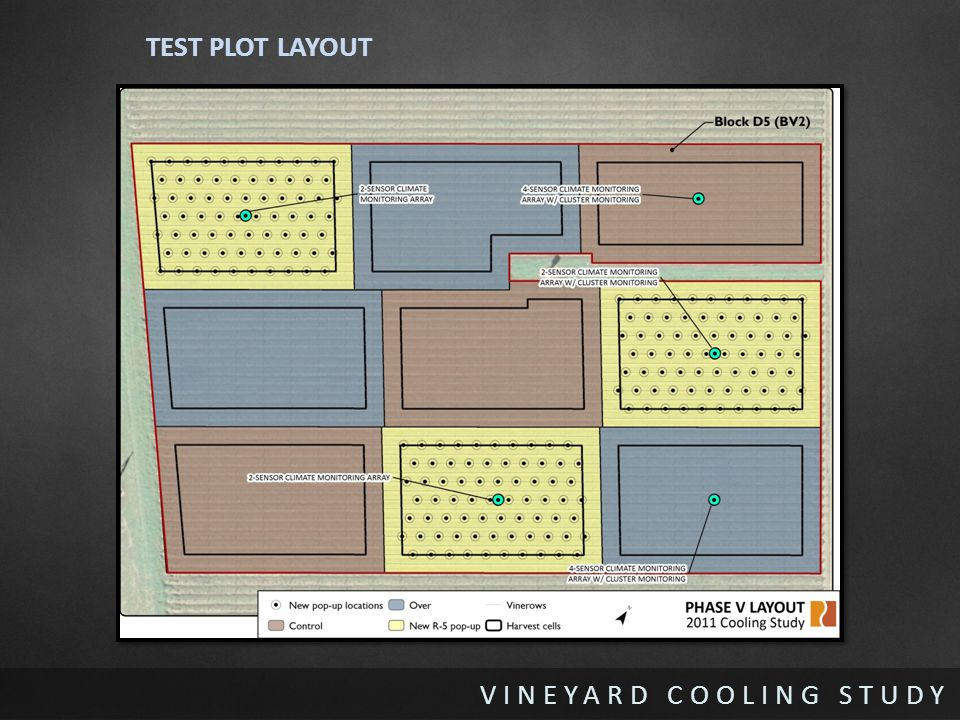 VINEYARD COOLING STUDY TEST PLOT LAYOUT