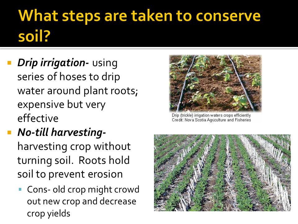  Drip irrigation- using series of hoses to drip water around plant roots; expensive but very effective  No-till harvesting- harvesting crop without turning soil.