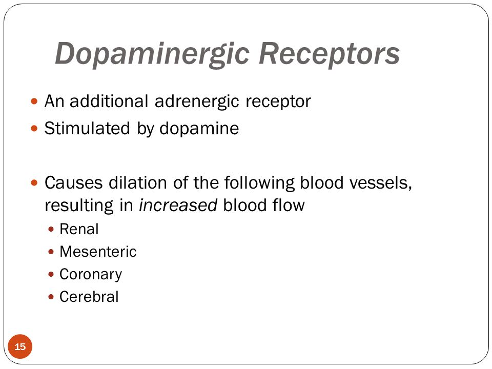 An additional adrenergic receptor Stimulated by dopamine Causes dilation of the following blood vessels, resulting in increased blood flow Renal Mesen