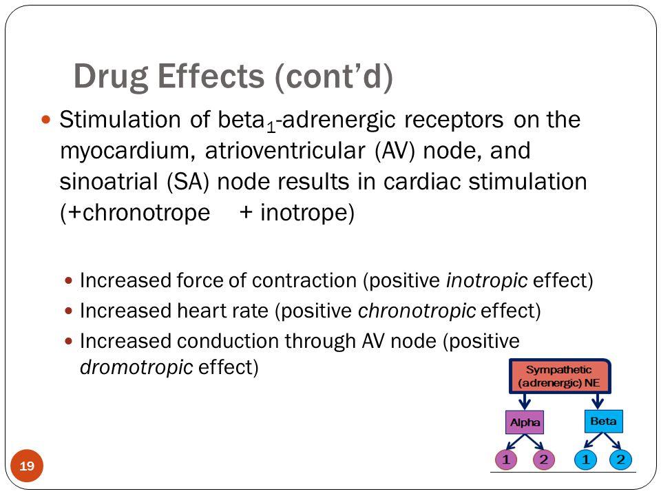 Stimulation of beta 1 -adrenergic receptors on the myocardium, atrioventricular (AV) node, and sinoatrial (SA) node results in cardiac stimulation (+c