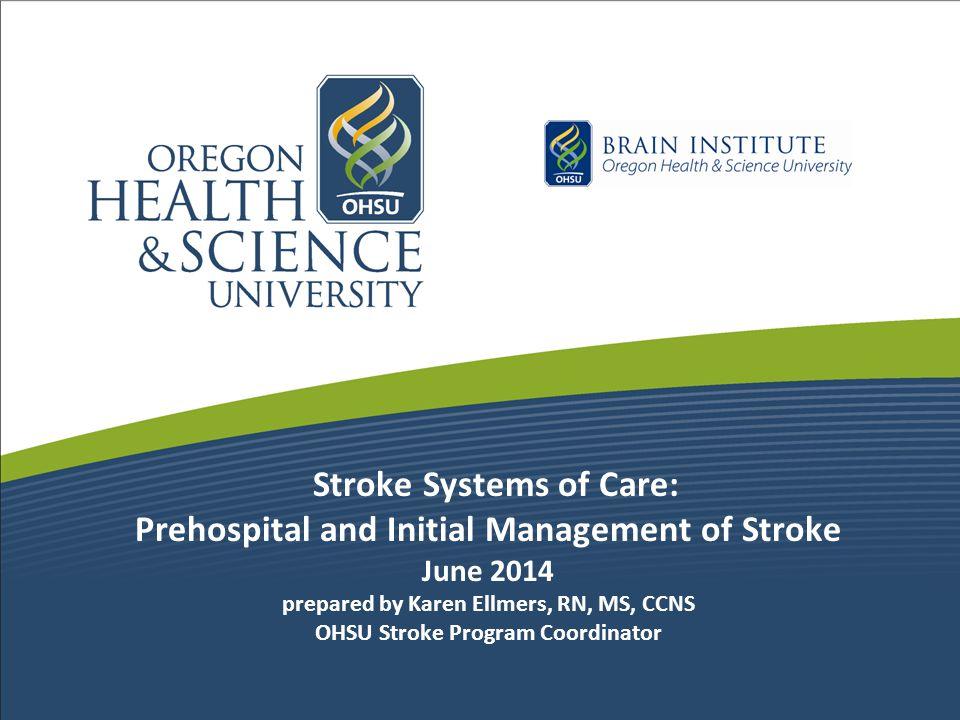 Primary Stroke Center, Metrics Stroke Core Measures Volume of Ischemic, TIA, ICH & SAH admits Acute Stroke workup times: –Door to CT –Door to lab results –Door to EKG & CXR IV tPA volume, door to needle times