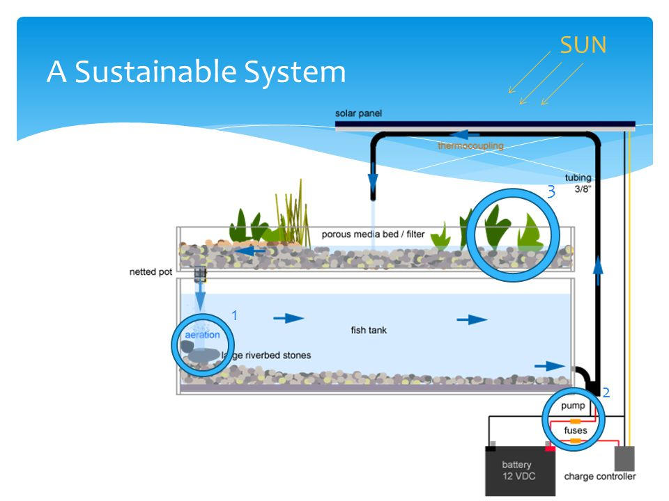 SUN A Sustainable System 1 2 3
