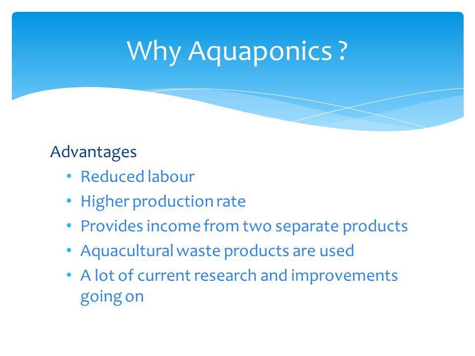 Why Aquaponics .