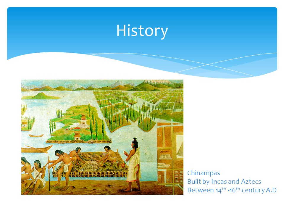 History Paddy Fields In China and Thailand Since the 6 th Century