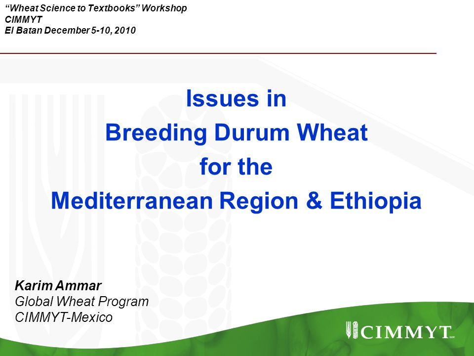 """Wheat Science to Textbooks"" Workshop CIMMYT El Batan December 5-10, 2010 Issues in Breeding Durum Wheat for the Mediterranean Region & Ethiopia Karim"