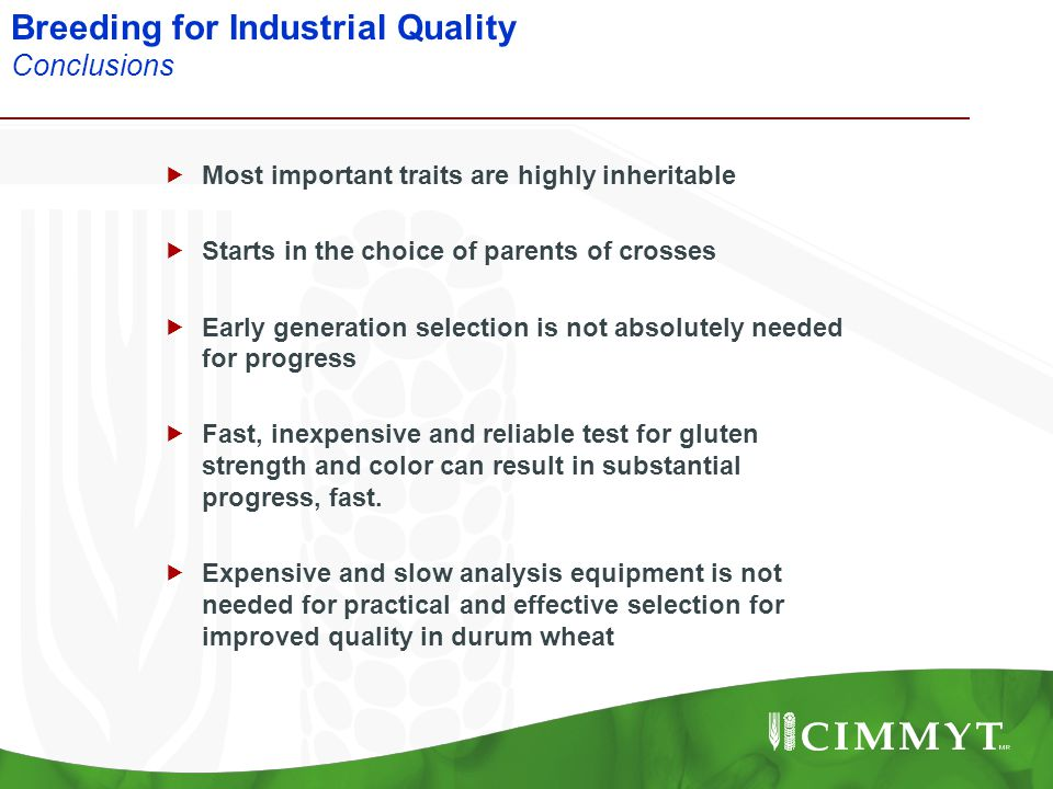 Breeding for Industrial Quality Conclusions  Most important traits are highly inheritable  Starts in the choice of parents of crosses  Early genera