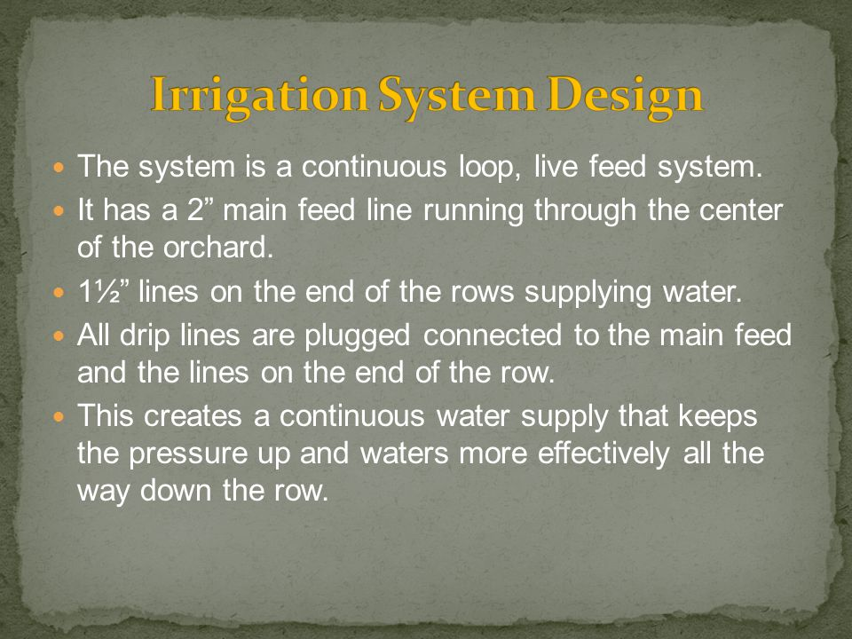 The system is a continuous loop, live feed system.