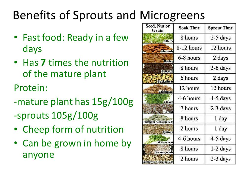 Growing Sprouts Jar method: 1)Place a table spoon of seeds in a jar.