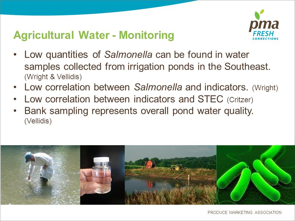 PRODUCE MARKETING ASSOCIATION Agricultural Water - Monitoring Low quantities of Salmonella can be found in water samples collected from irrigation ponds in the Southeast.