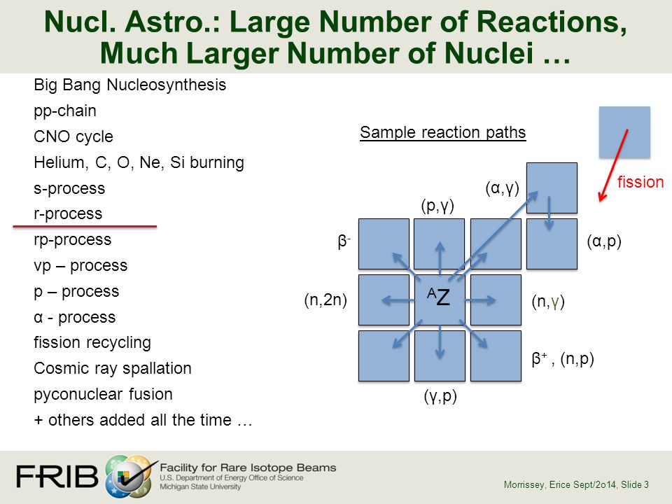 Nucl. Astro.: Large Number of Reactions, Much Larger Number of Nuclei … Morrissey, Erice Sept/2o14, Slide 3 Big Bang Nucleosynthesis pp-chain CNO cycl