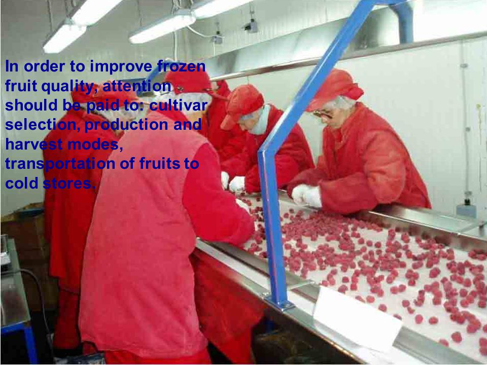 In order to improve frozen fruit quality, attention should be paid to: cultivar selection, production and harvest modes, transportation of fruits to c