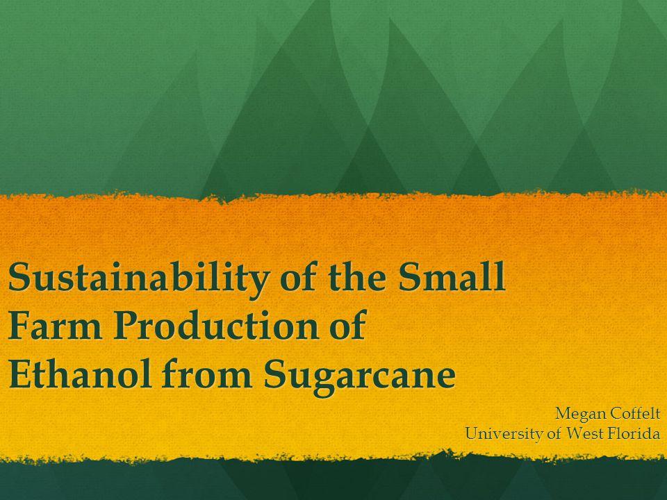Sustainability of the Small Farm Production of Ethanol from Sugarcane Megan Coffelt University of West Florida